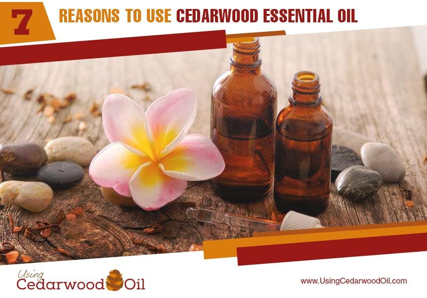 cedarwood essential oil for the body