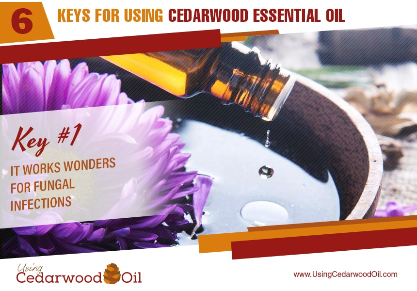 cedarwood essential oil uses