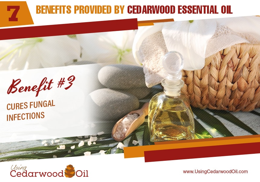 cedarwood essential oil for the body